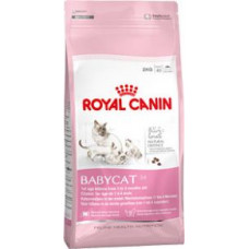 Royal Canin (Роял Канин) BABYCAT 34